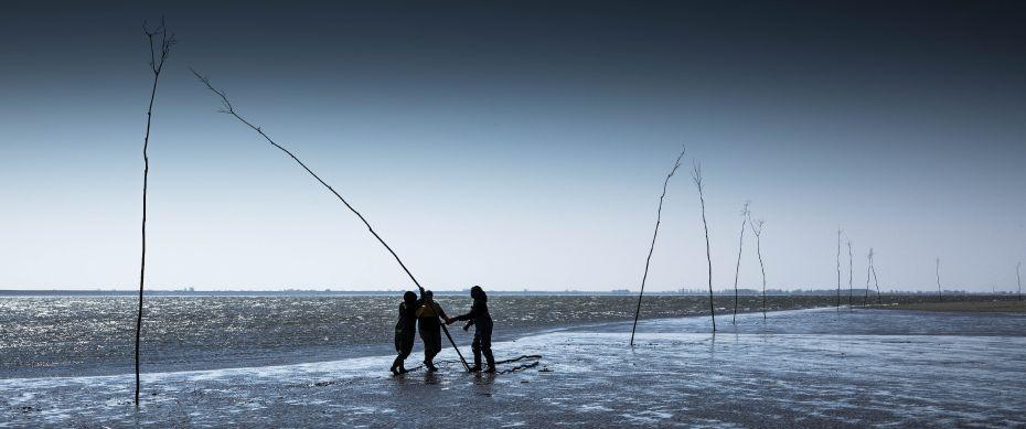 Een afbeelding van Silence of the Tides